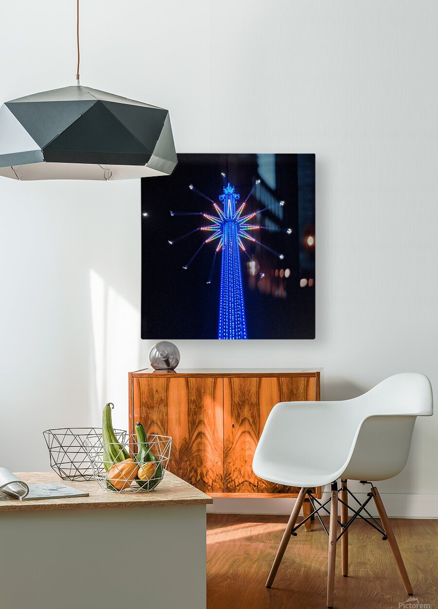 Flying High  HD Metal print with Floating Frame on Back