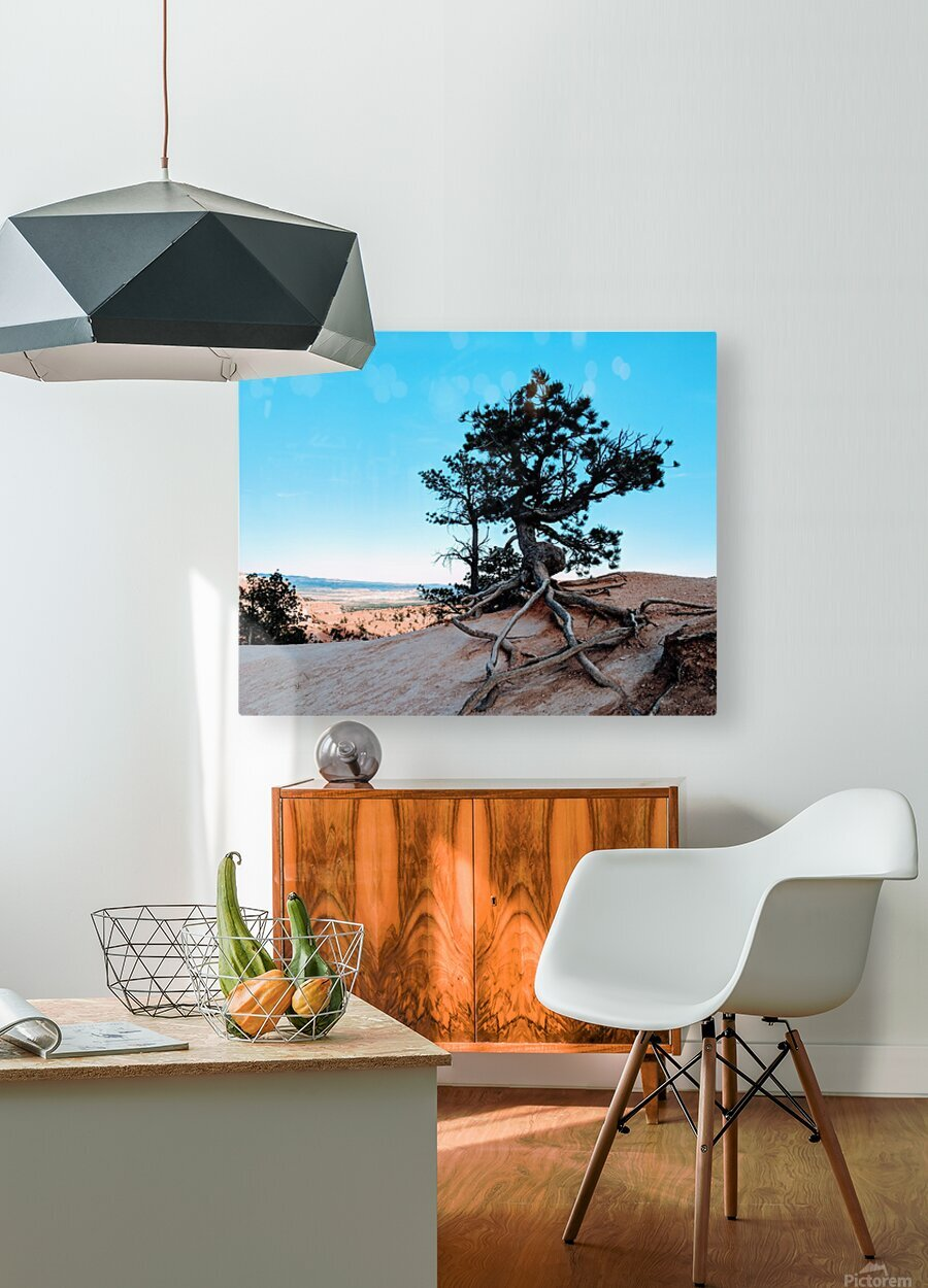 Bryce Canyon IV  HD Metal print with Floating Frame on Back