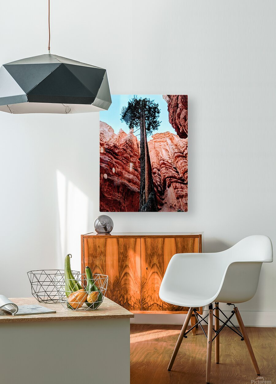 Bryce Canyon II  HD Metal print with Floating Frame on Back