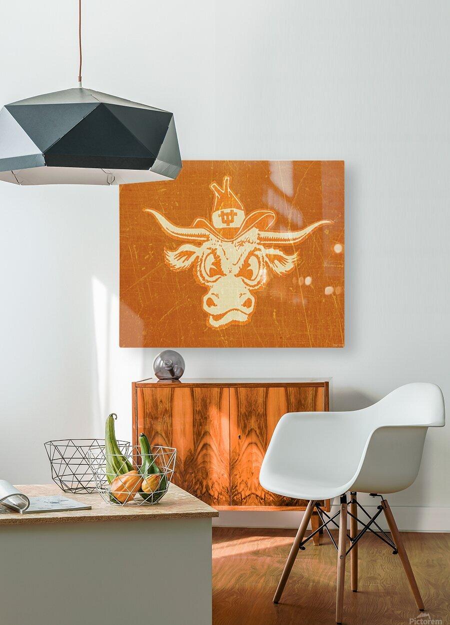 1950s Texas Longhorn Art  HD Metal print with Floating Frame on Back