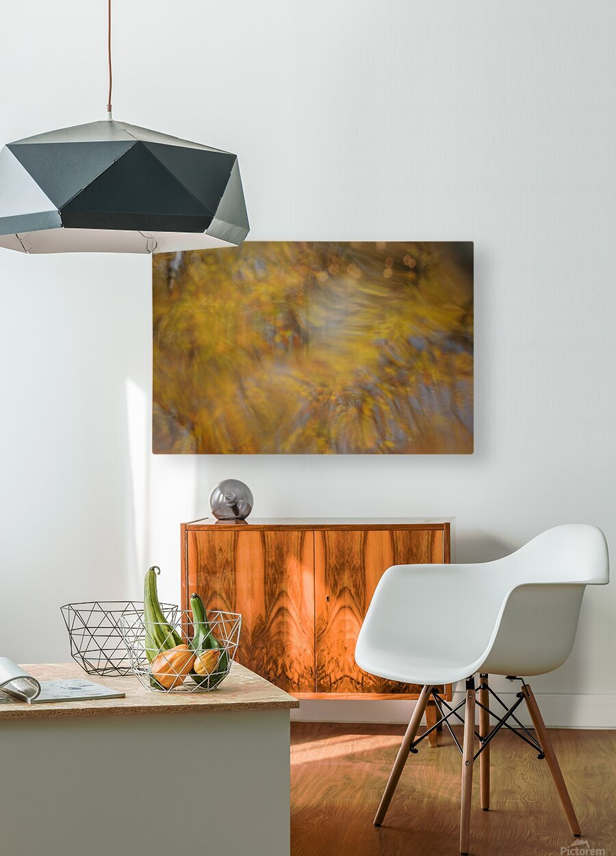 Autumnal swirls reflections 2  HD Metal print with Floating Frame on Back