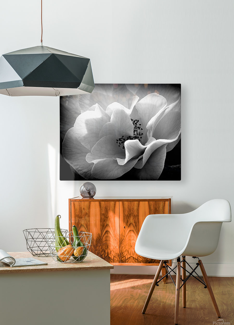 Linen   HD Metal print with Floating Frame on Back