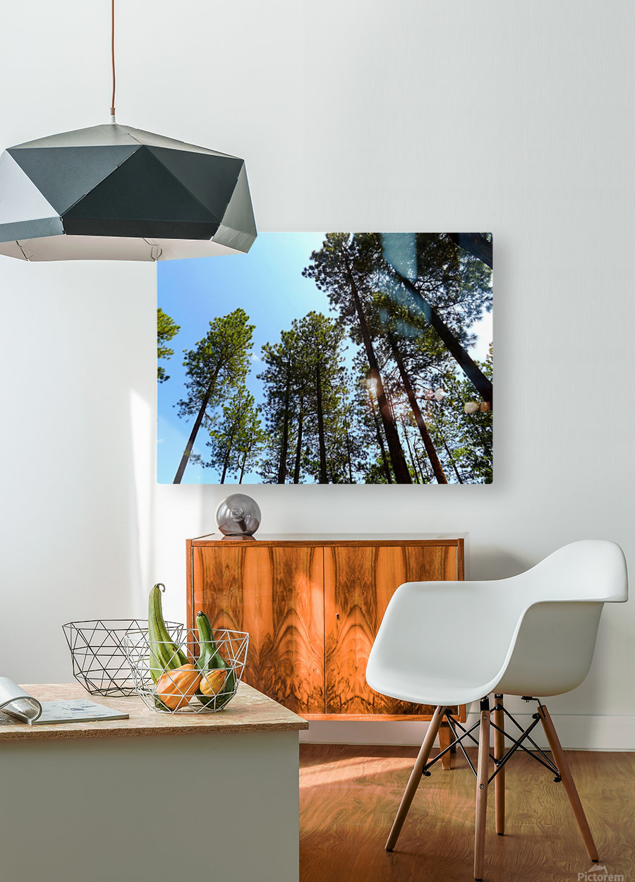 Blue Sky  HD Metal print with Floating Frame on Back