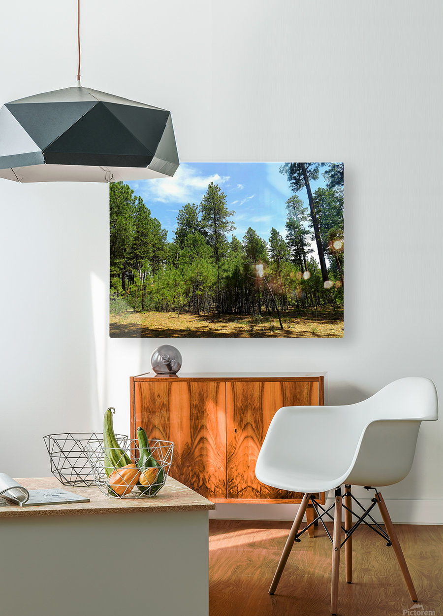 Deep In  HD Metal print with Floating Frame on Back