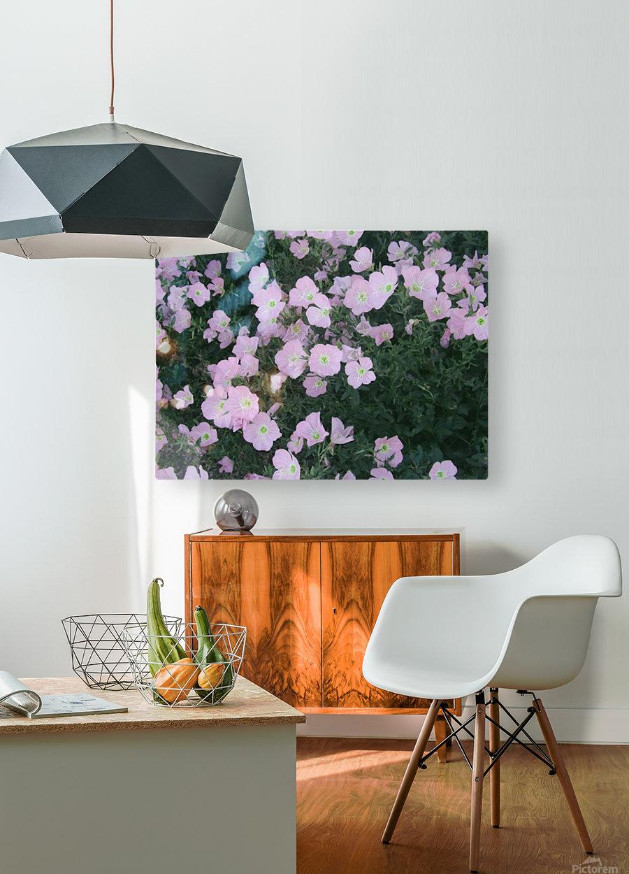 Flower Garden 2  HD Metal print with Floating Frame on Back