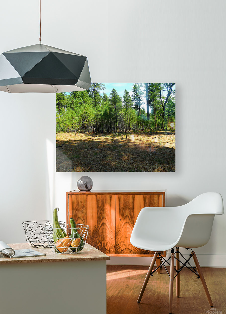 Deeper In  HD Metal print with Floating Frame on Back