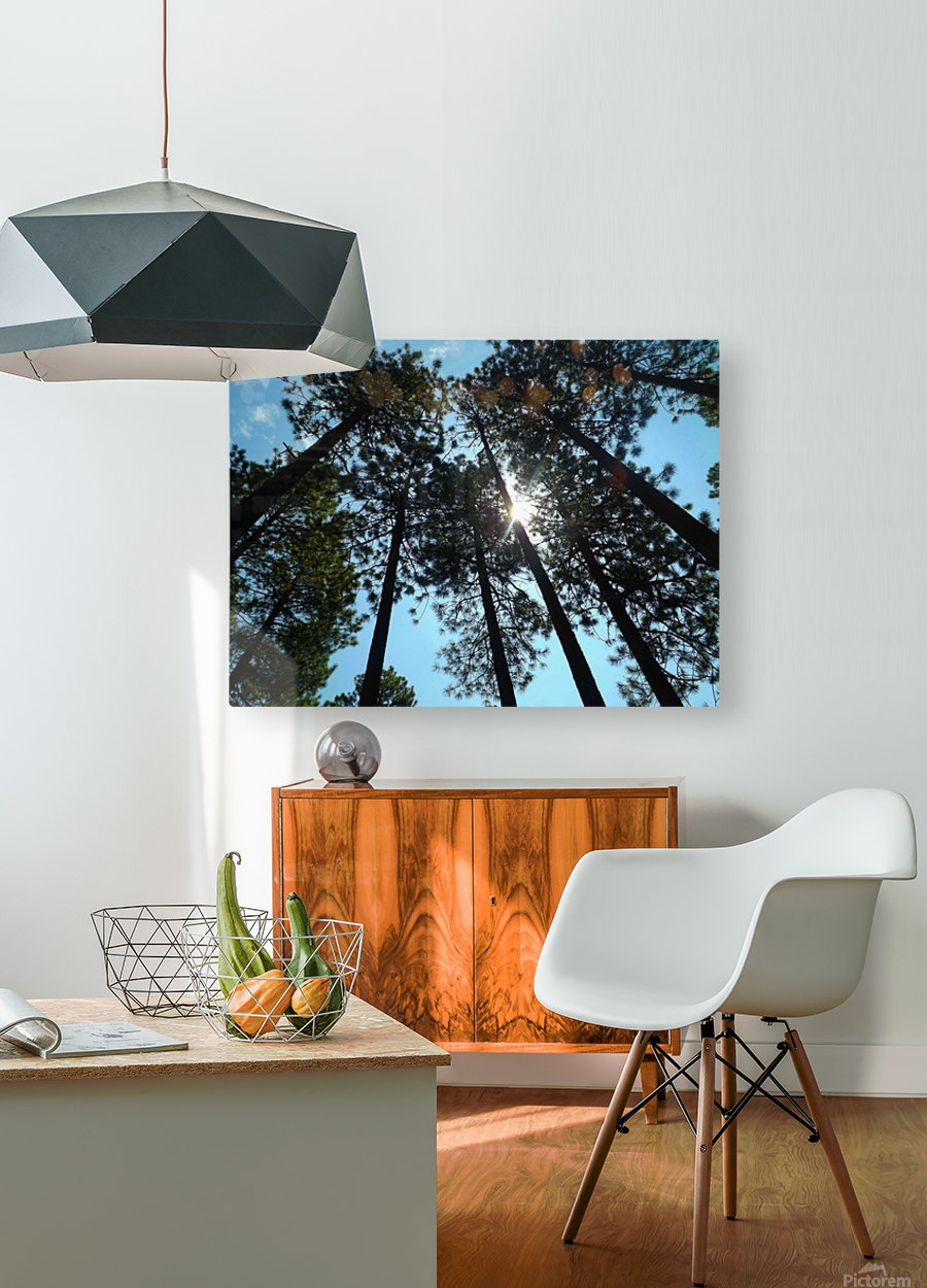 Look Up  Impression métal HD avec cadre flottant sur le dos