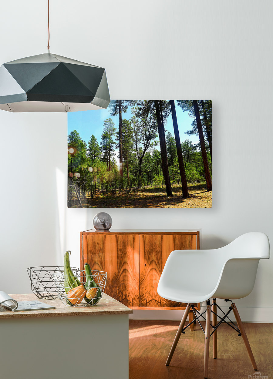 From A Differet Place  Impression métal HD avec cadre flottant sur le dos