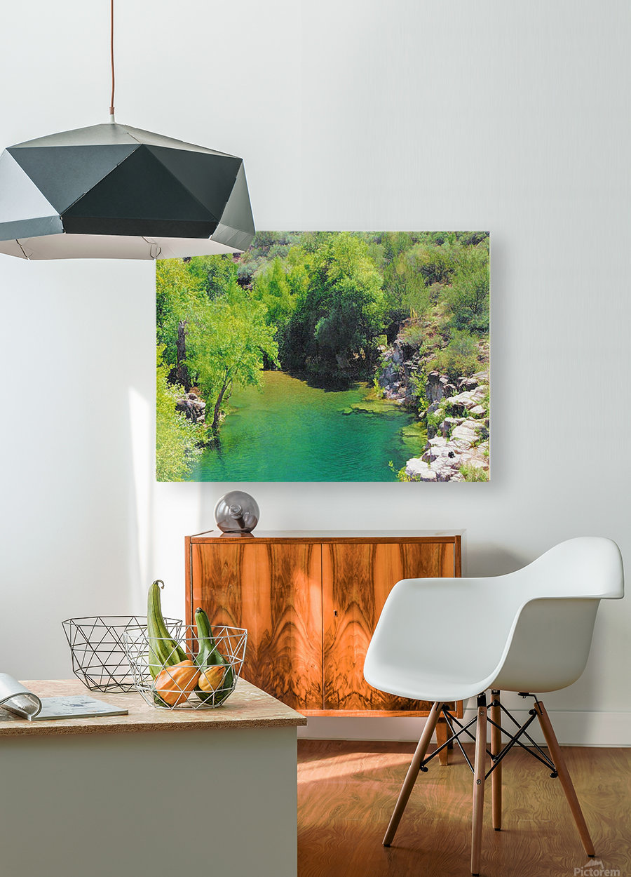 Pond  HD Metal print with Floating Frame on Back