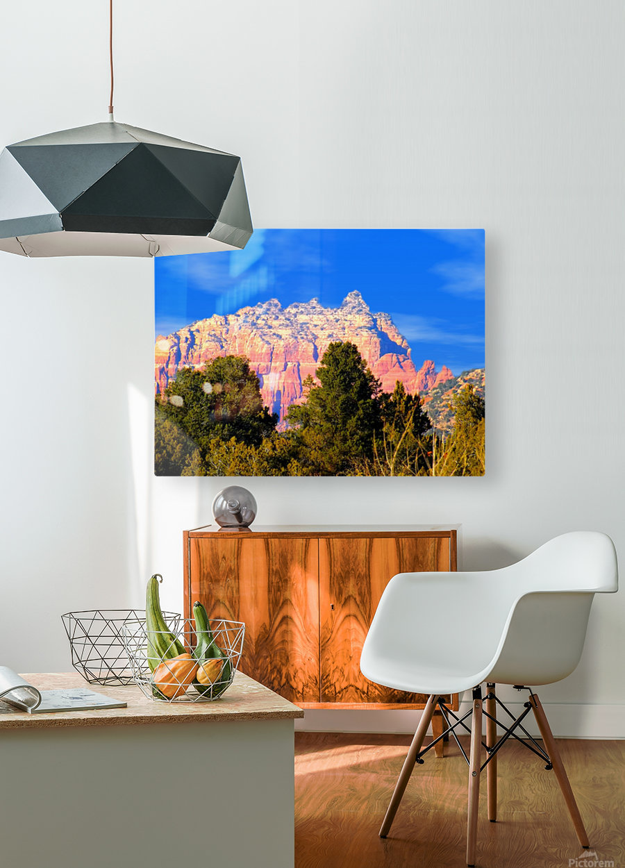 Such A View  HD Metal print with Floating Frame on Back