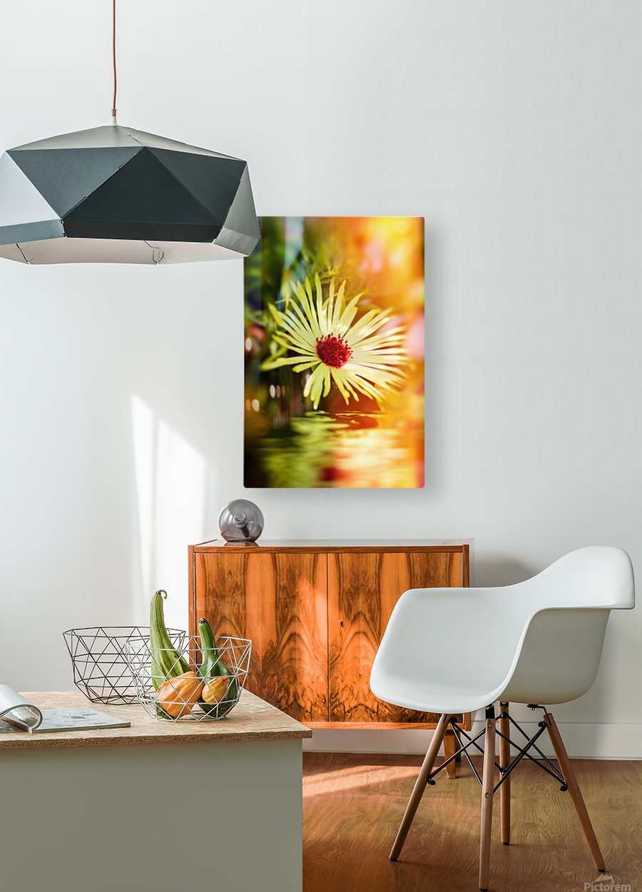 Sun worshippers yellow  HD Metal print with Floating Frame on Back