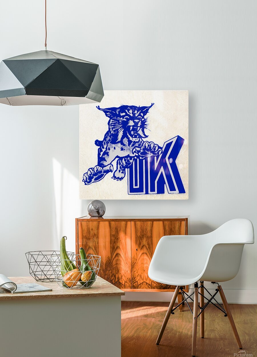 1970s kentucky wildcat  HD Metal print with Floating Frame on Back