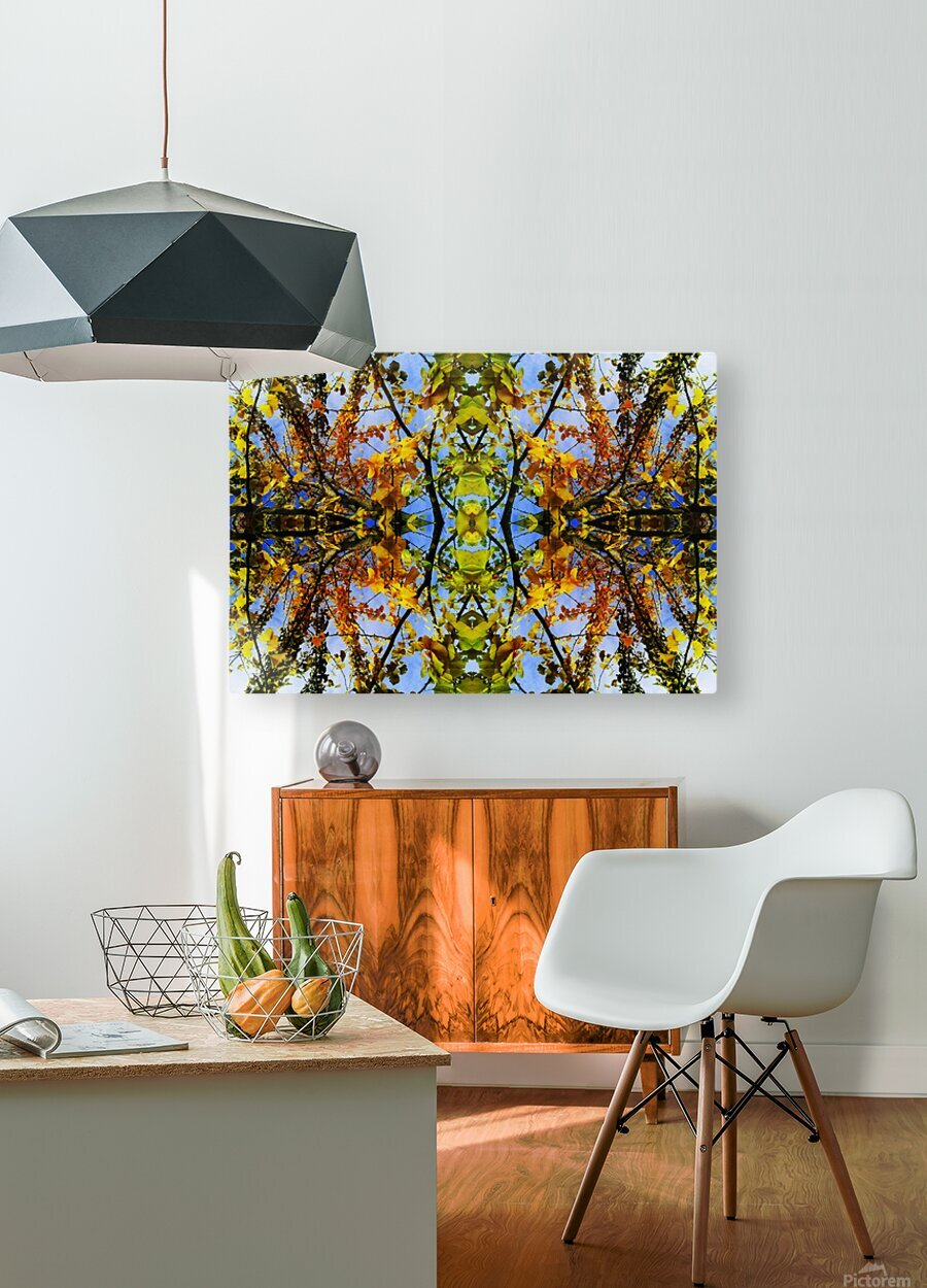 flower43  HD Metal print with Floating Frame on Back