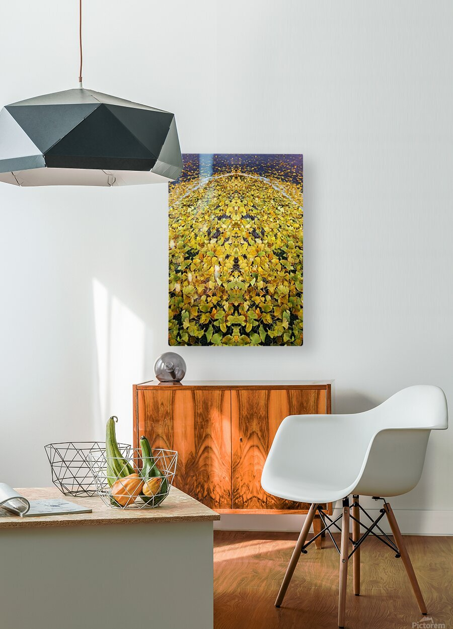 Autumn1  HD Metal print with Floating Frame on Back