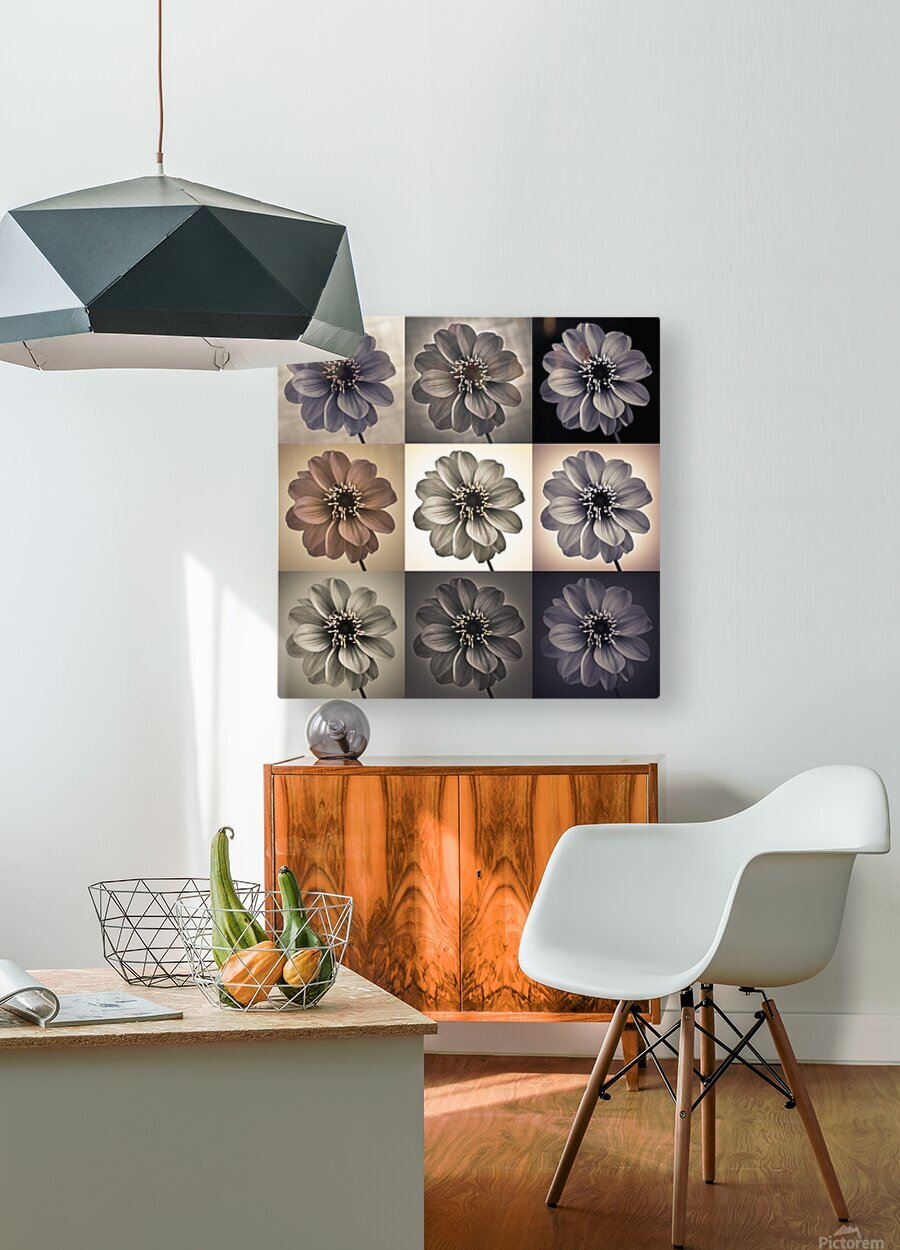 Collage of Dahlias flowers  HD Metal print with Floating Frame on Back