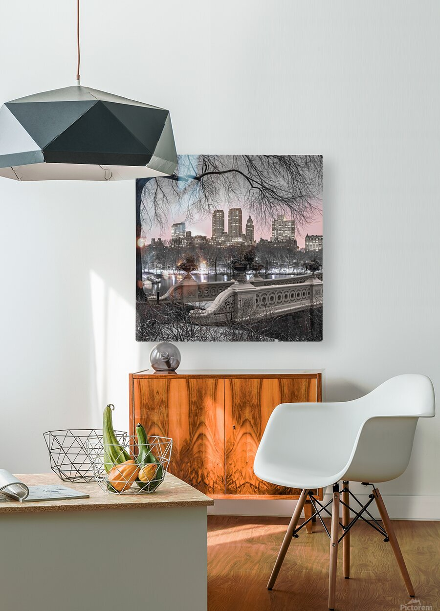 Central park with Manhattan skyline, New York  HD Metal print with Floating Frame on Back