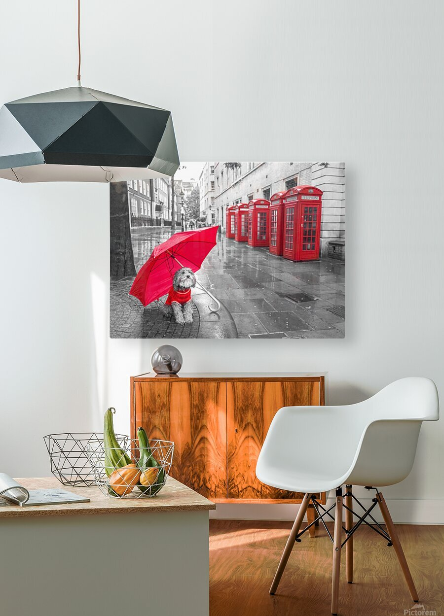 Dog with umbrella on London city street  HD Metal print with Floating Frame on Back