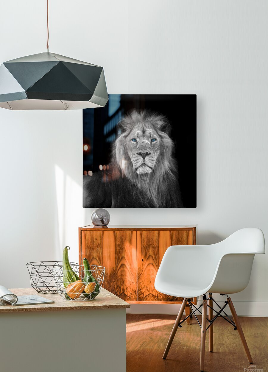 Lion face  HD Metal print with Floating Frame on Back