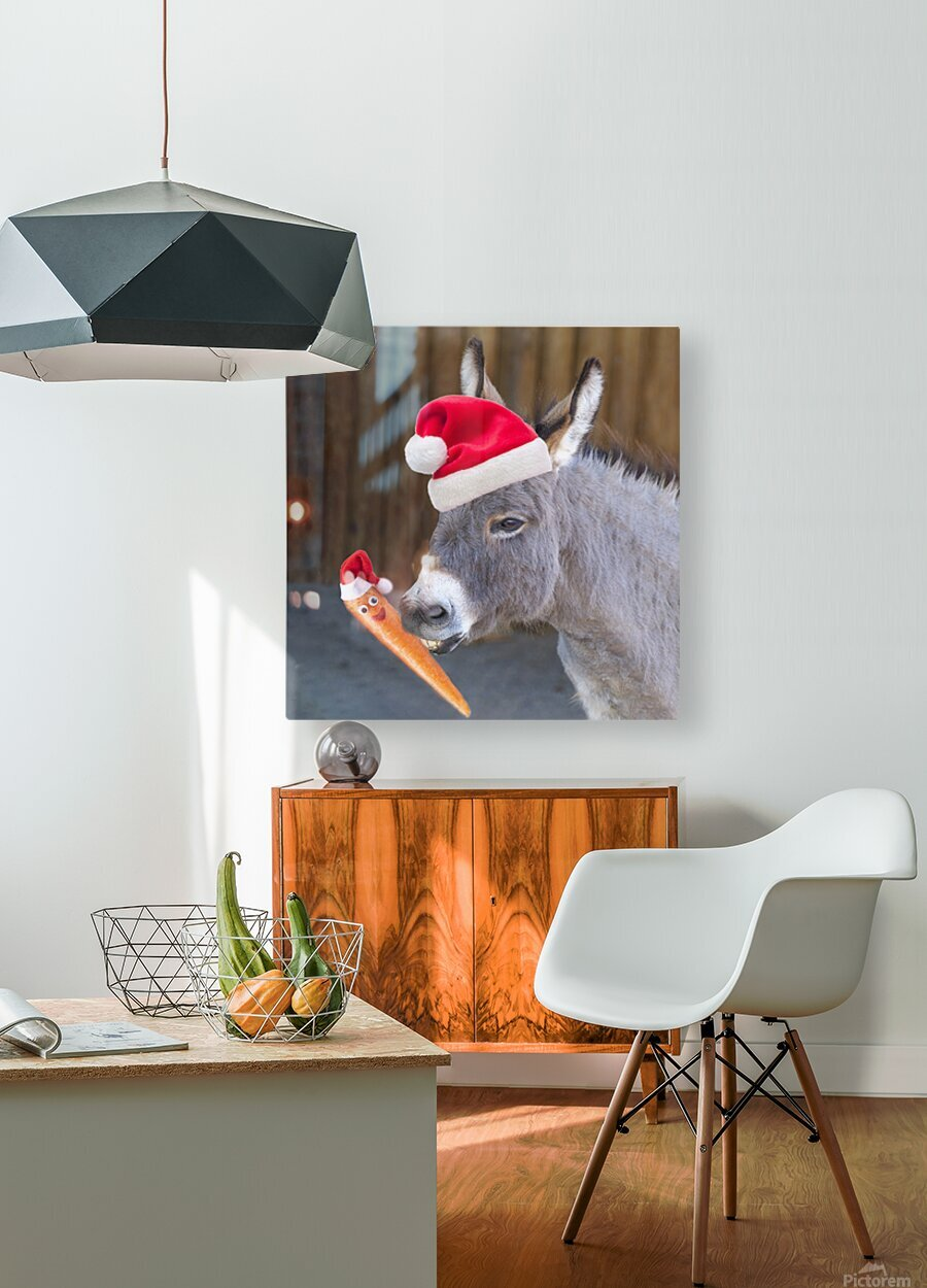 Donkey with Santa hat  HD Metal print with Floating Frame on Back