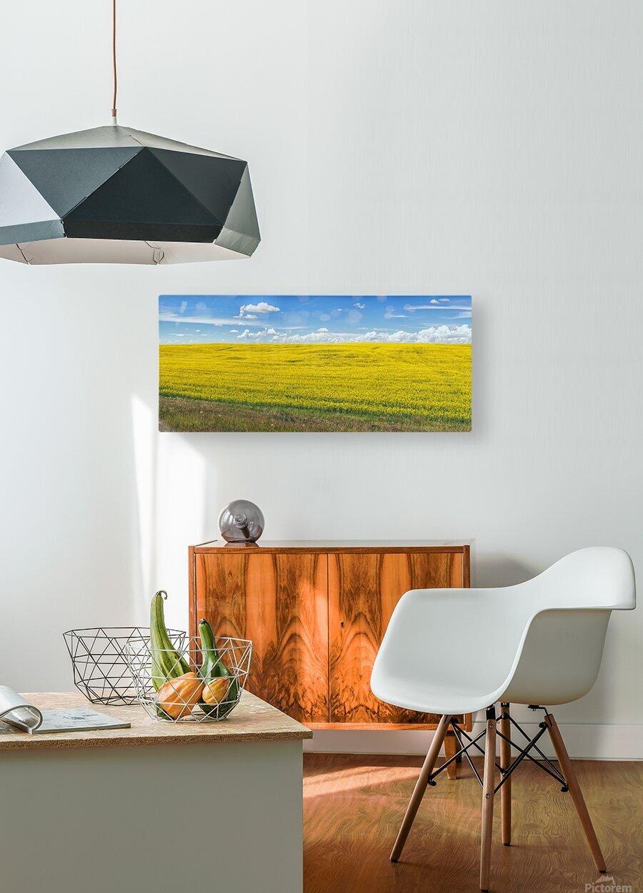Blue Sky  HD Metal print with Floating Frame on Back