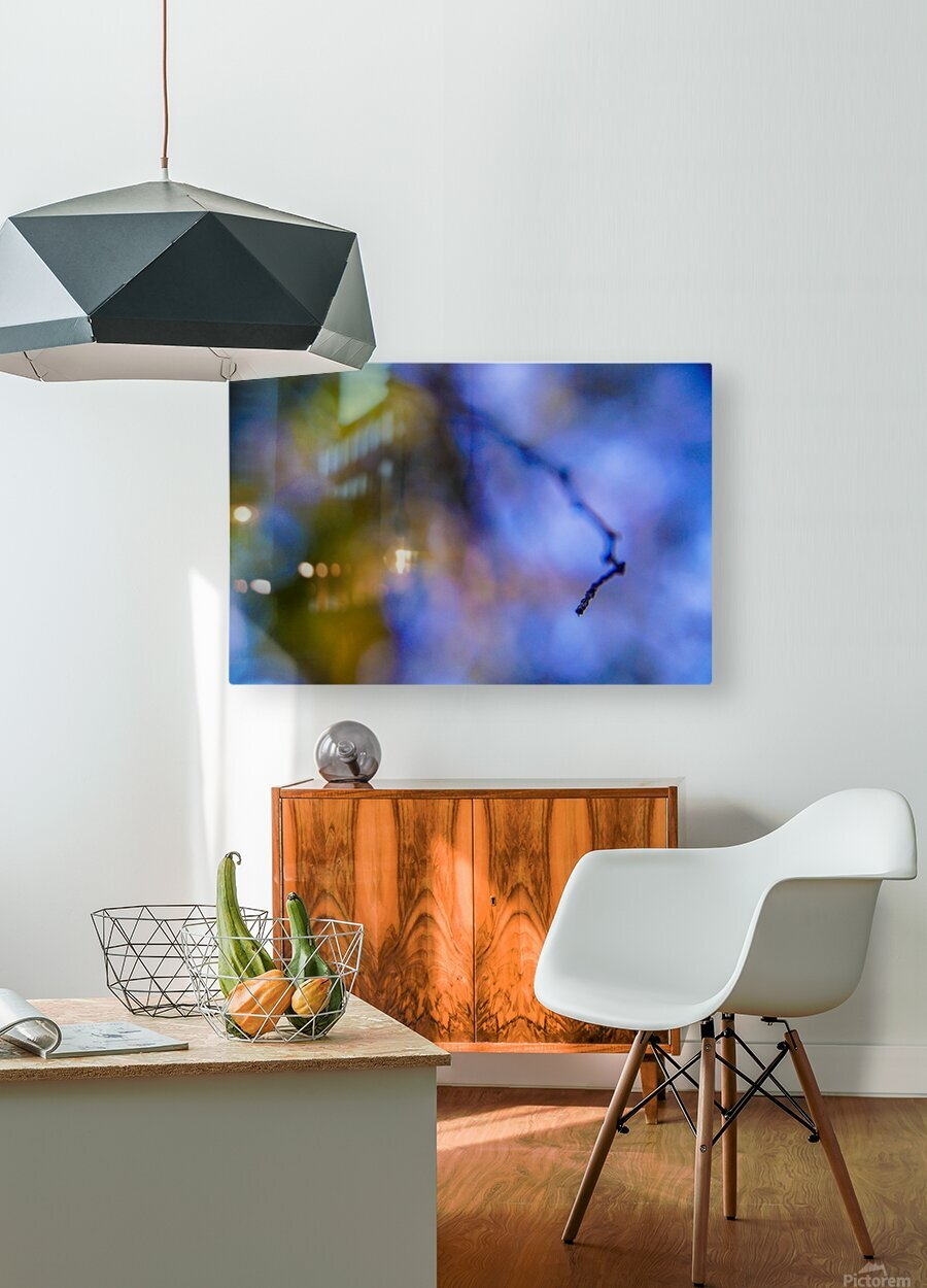 Automnejf 11   HD Metal print with Floating Frame on Back