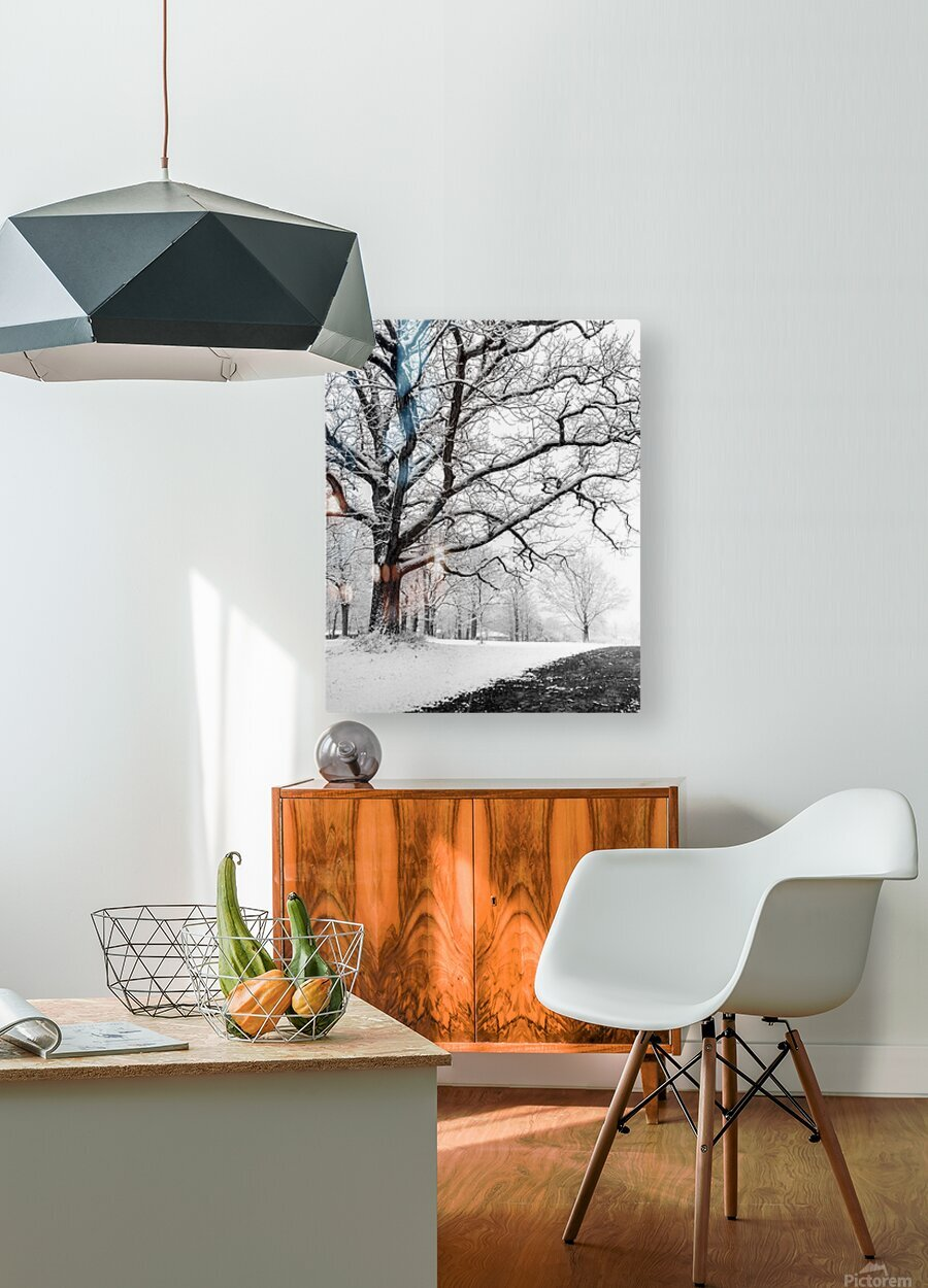 First Snowfall  HD Metal print with Floating Frame on Back