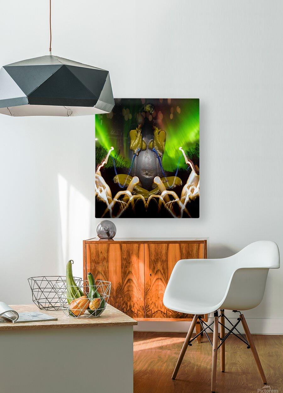 AURORA LANDING  HD Metal print with Floating Frame on Back