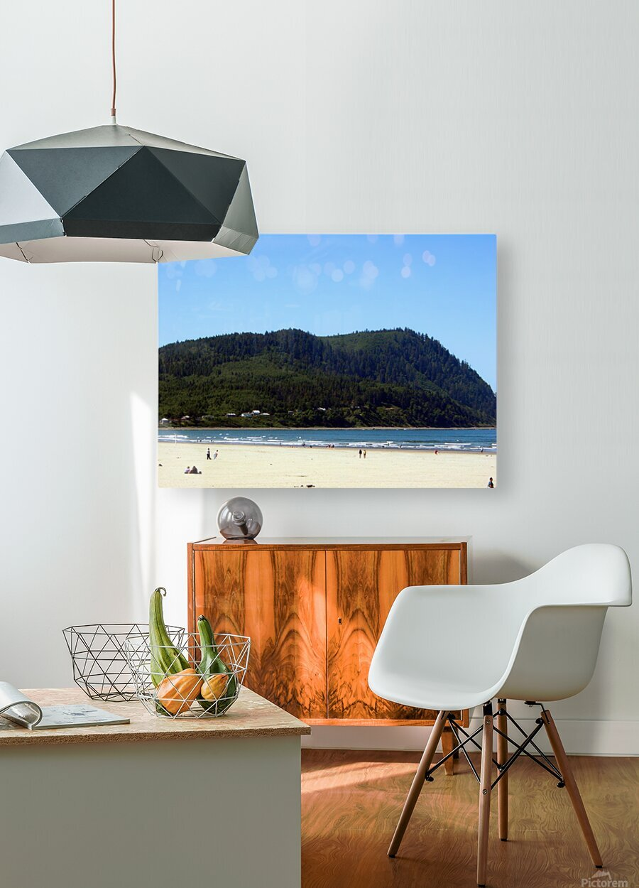 Oregon Coast   Snapshot in Time  HD Metal print with Floating Frame on Back
