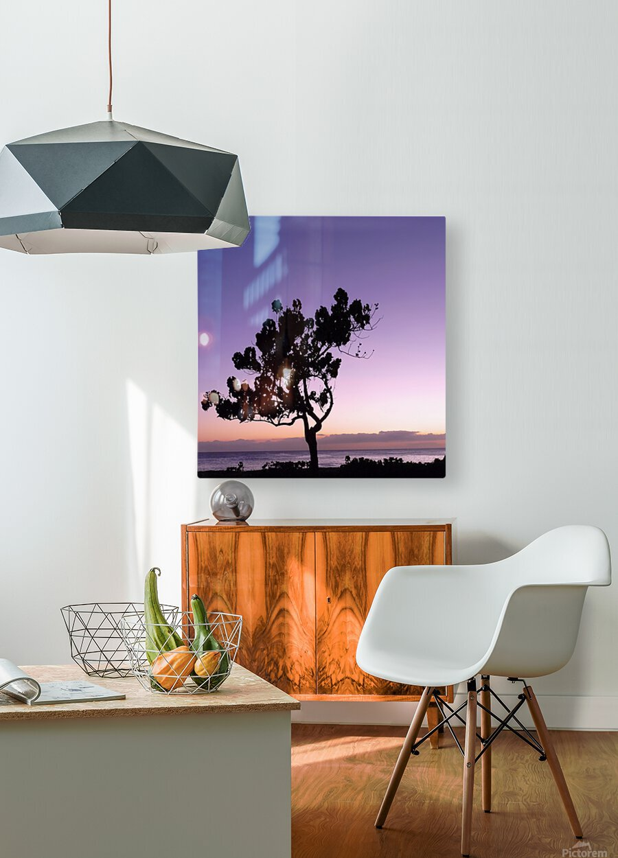 Silhouette  HD Metal print with Floating Frame on Back