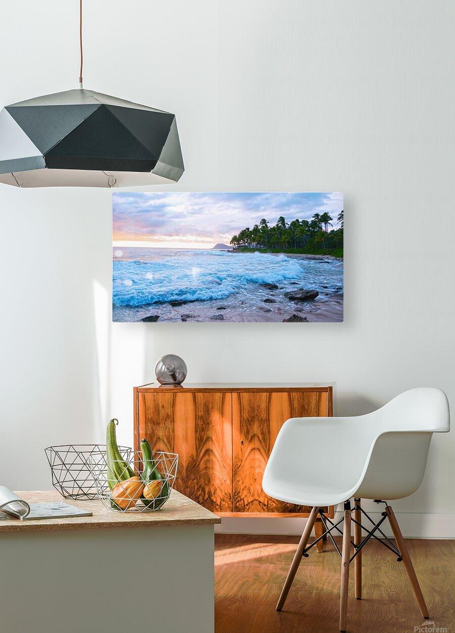 Untamed Hawaii  HD Metal print with Floating Frame on Back
