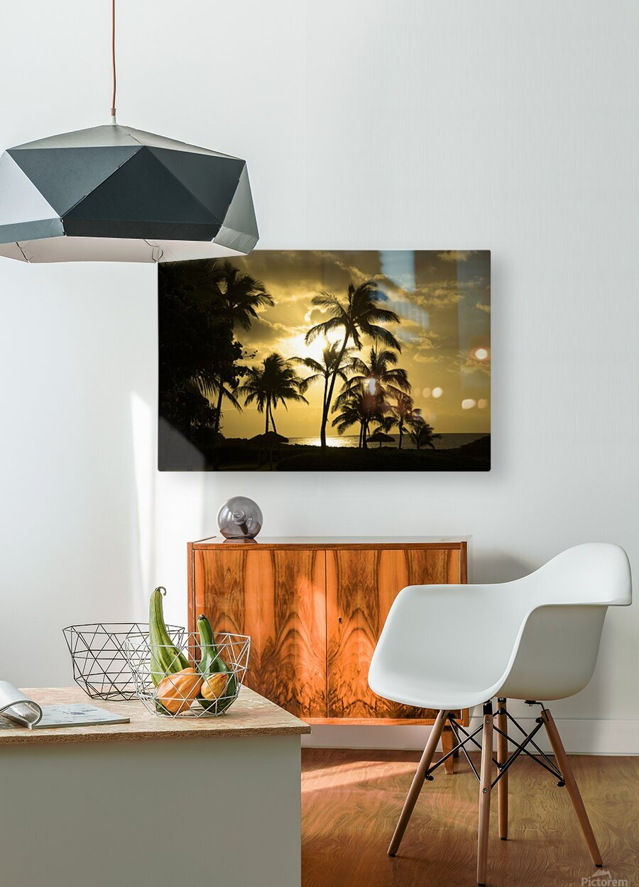 Paradise Dreams  HD Metal print with Floating Frame on Back
