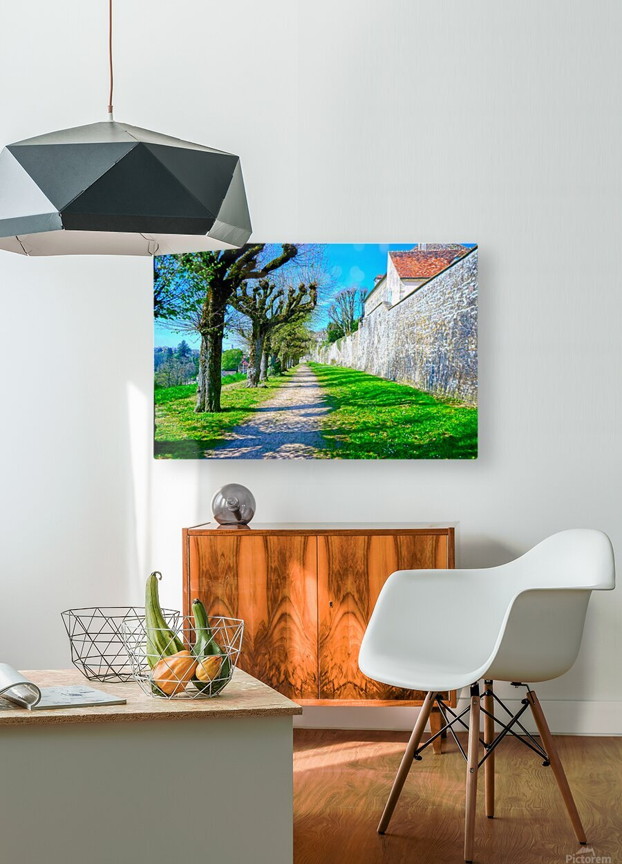 Secret Avallon 4 of 6  HD Metal print with Floating Frame on Back