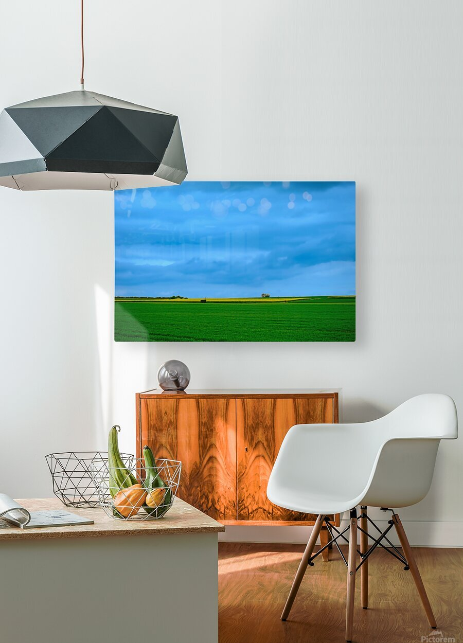 Painted Fields - 2017 Gallery Artwork of the Year - Minimalism  HD Metal print with Floating Frame on Back