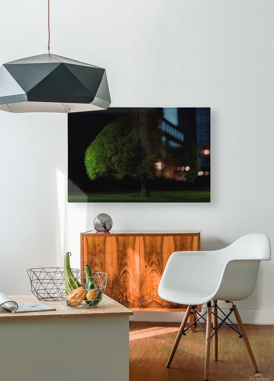 Mushroom tree by Stelios Kirtselis   HD Metal print with Floating Frame on Back