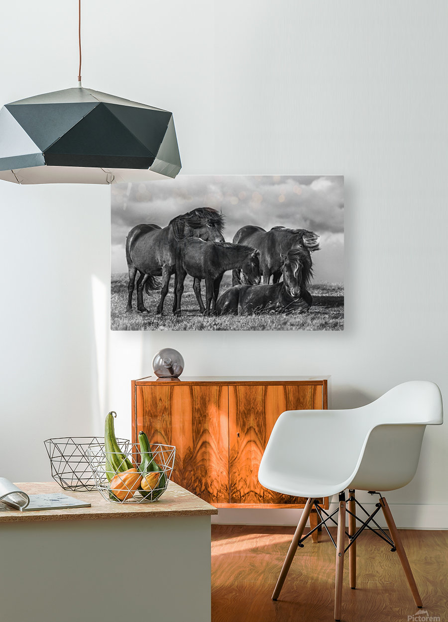 Happy Family by Bragi Ingibergsson  HD Metal print with Floating Frame on Back