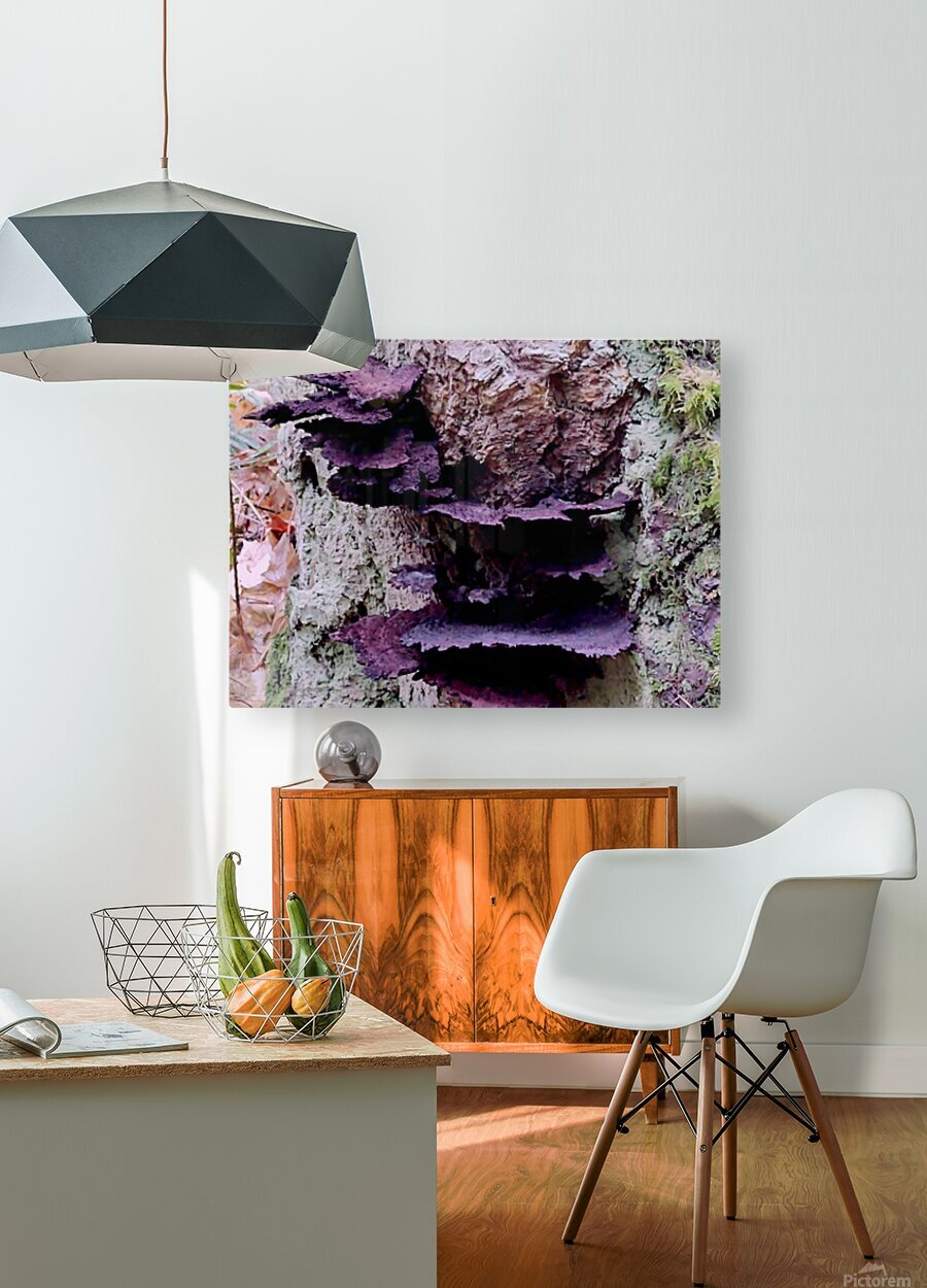 Tiny World 8 of 8  HD Metal print with Floating Frame on Back