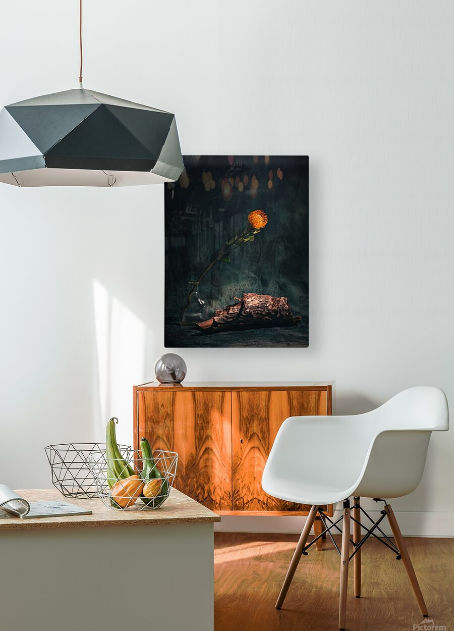 Zen 3b  HD Metal print with Floating Frame on Back