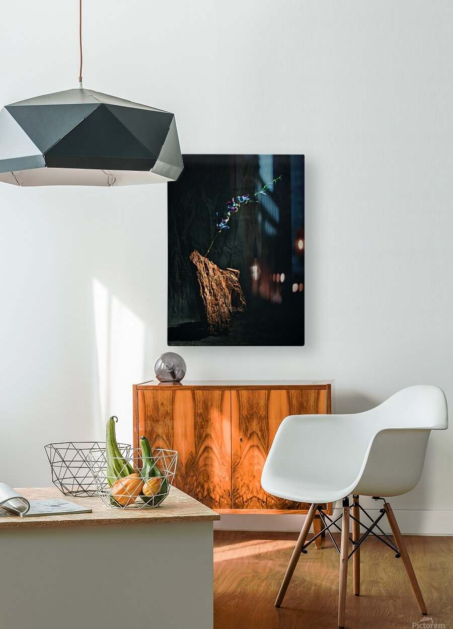 Le jour de lillumination  HD Metal print with Floating Frame on Back