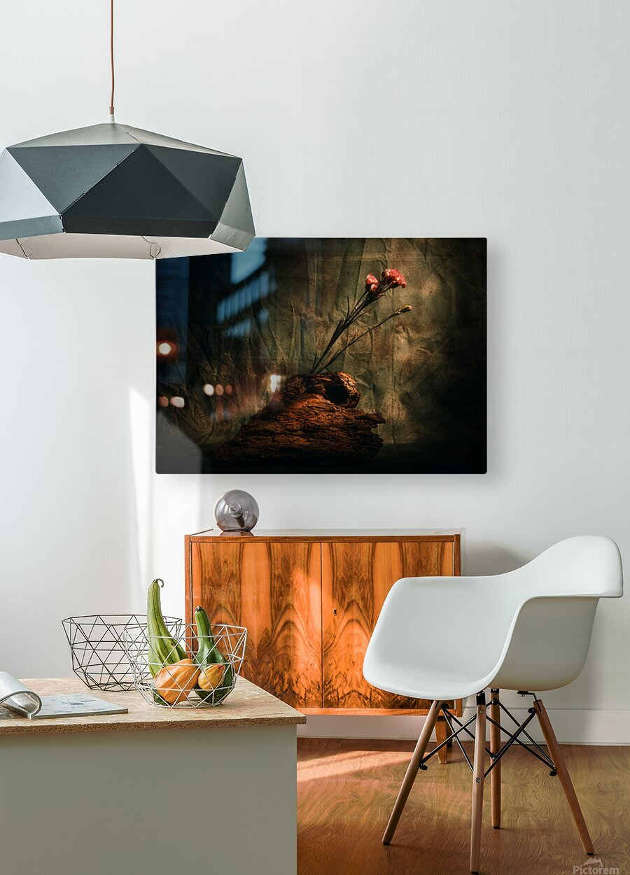Montagne et Zen  HD Metal print with Floating Frame on Back