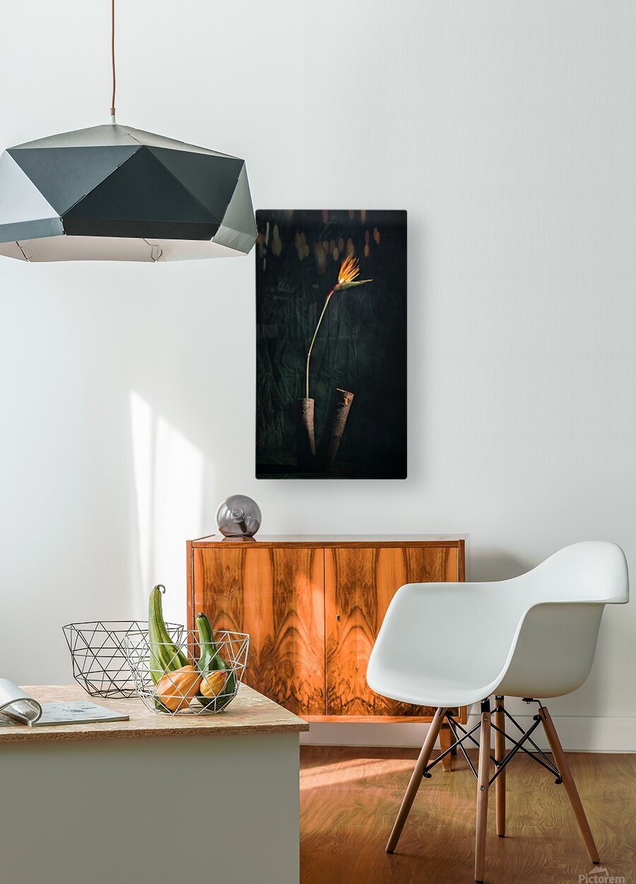 Zen 1  HD Metal print with Floating Frame on Back