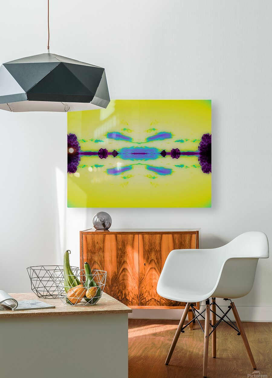 Portal  29   HD Metal print with Floating Frame on Back