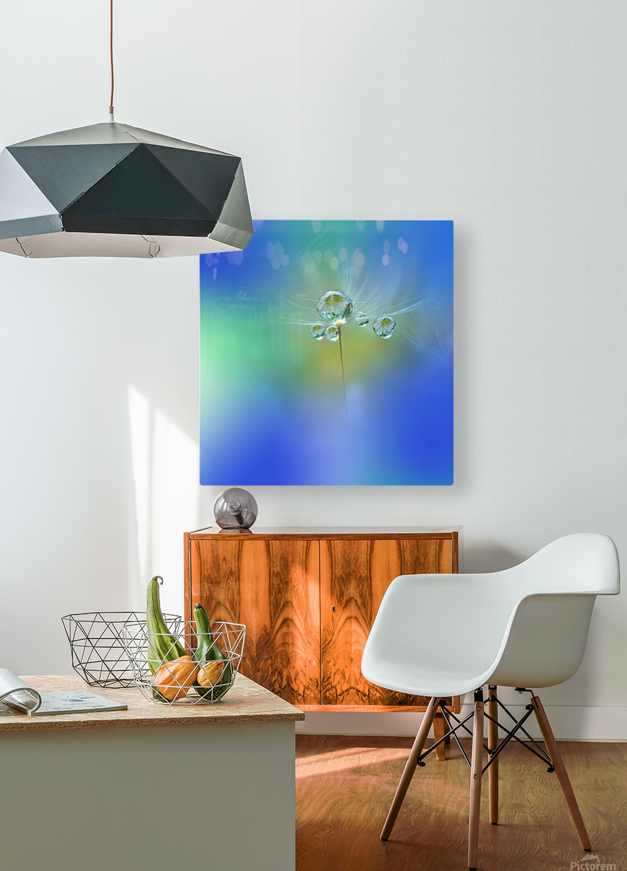 World of Drops  HD Metal print with Floating Frame on Back