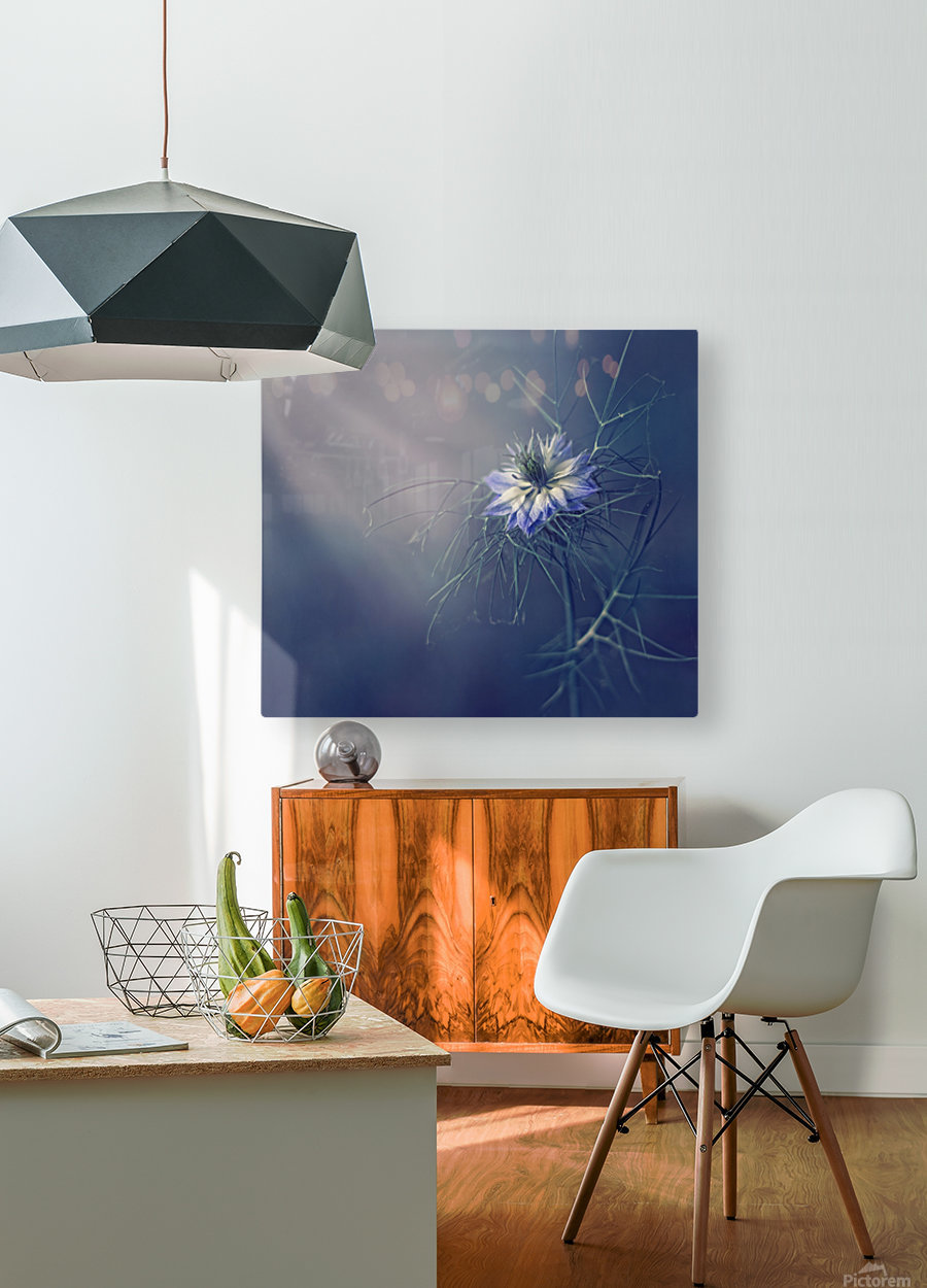 ....*  HD Metal print with Floating Frame on Back