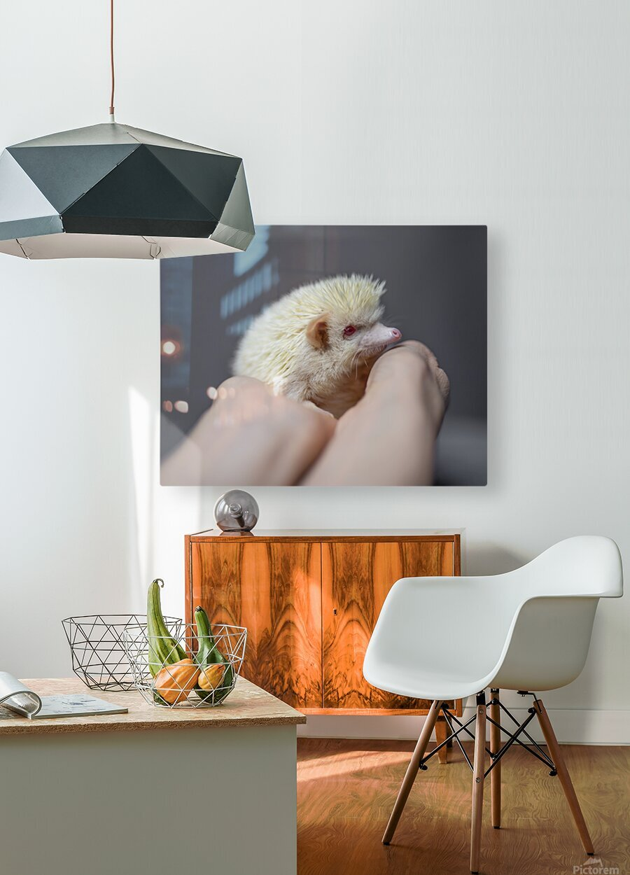 Picky Pickle II  HD Metal print with Floating Frame on Back