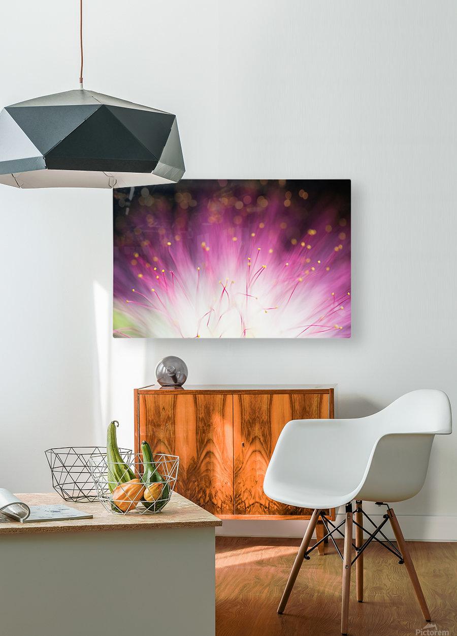 Elfin  HD Metal print with Floating Frame on Back