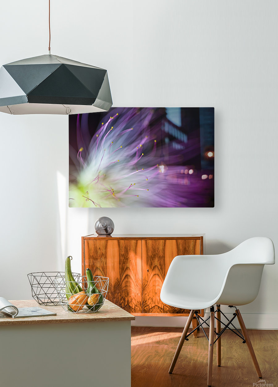 The Will-o-the-Wisp  HD Metal print with Floating Frame on Back