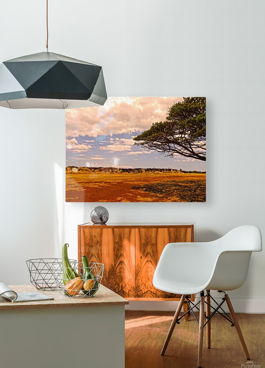 Untamed Kauai 1 of 5  HD Metal print with Floating Frame on Back