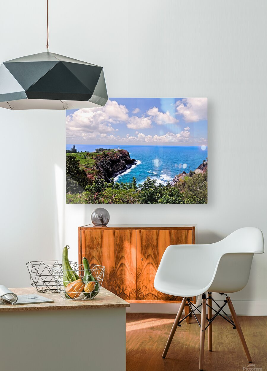 Untamed Kauai 4 of 5  HD Metal print with Floating Frame on Back