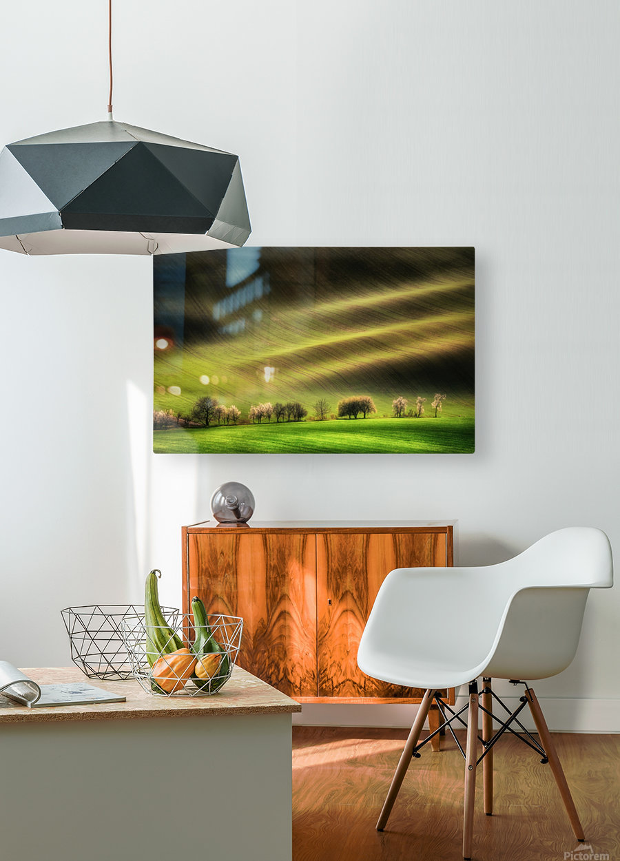 Moravian Fields  HD Metal print with Floating Frame on Back
