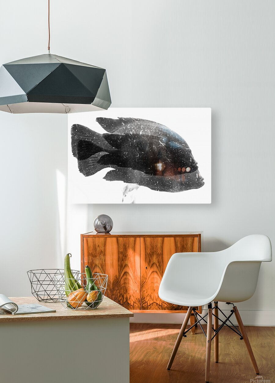 DOS FISHES  HD Metal print with Floating Frame on Back